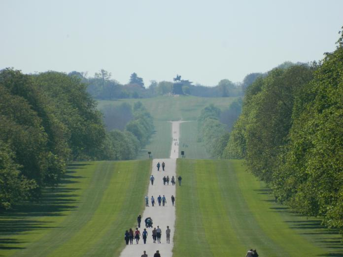 A walk in Windsor Great Park